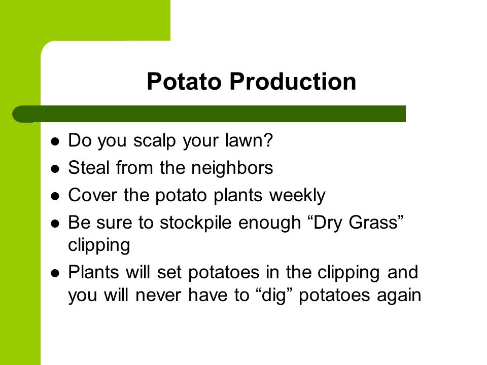 Potato Production Do you scalp your lawn.