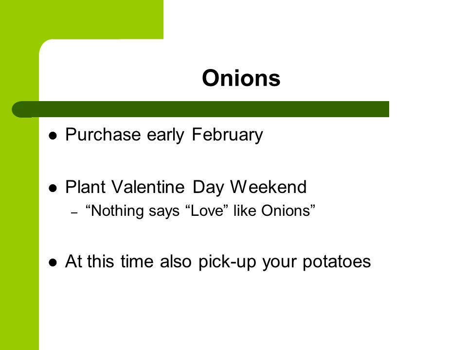 Onions Purchase early February Plant Valentine Day Weekend – Nothing says Love like Onions At this time also pick-up your potatoes