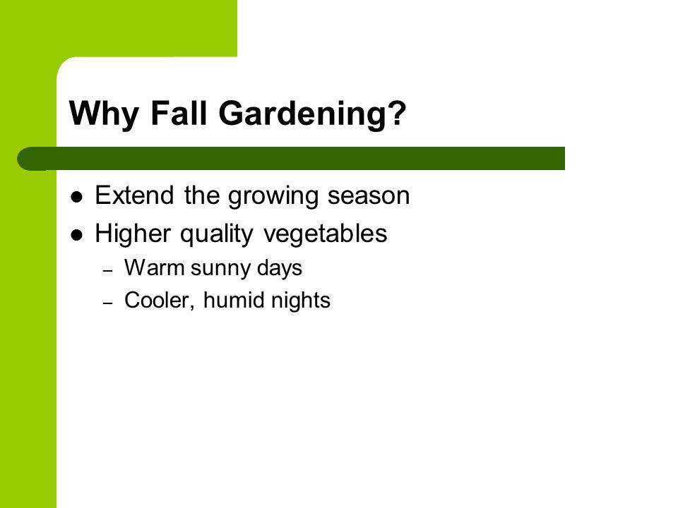 Why Fall Gardening.