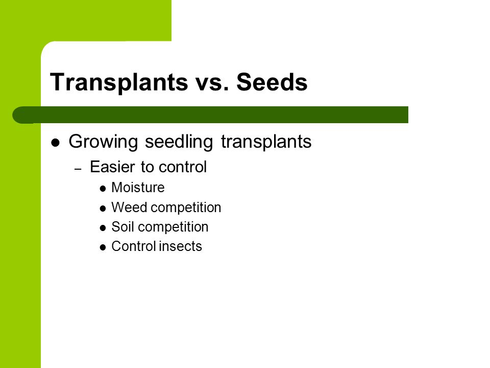 Transplants vs.