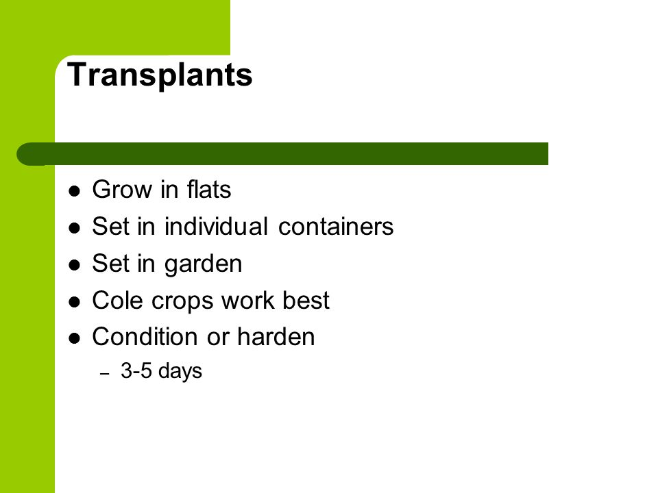 Transplants Grow in flats Set in individual containers Set in garden Cole crops work best Condition or harden – 3-5 days