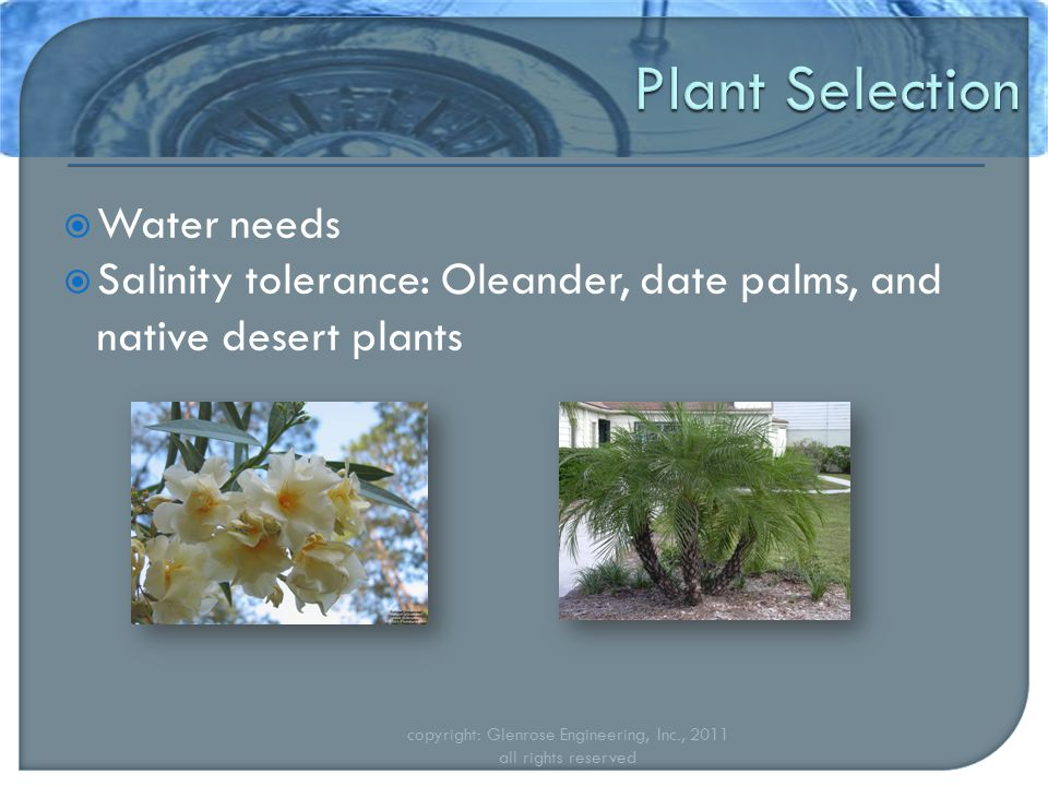  Water needs  Salinity tolerance: Oleander, date palms, and native desert plants copyright: Glenrose Engineering, Inc., 2011 all rights reserved