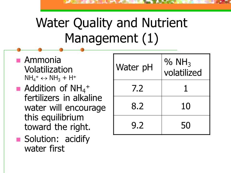Water Quality and Nutrient Management (1) Ammonia Volatilization NH 4 +  NH 3 + H + Addition of NH 4 + fertilizers in alkaline water will encourage this equilibrium toward the right.