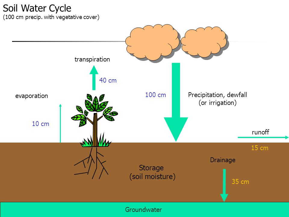 Example Orange grove water balance Change in VWC = 0.070 m 3 / m 3 over 6 days Probes in top meter of soil so 11.7 mm of water lost out of the root zone per day If ET is estimated as 7 mm per day Estimate water leaching to ground water Runoff can be ignored in the sand Deep percolation is calculated as the residual 11.7 mm – 7 mm = 4.7 mm estimated leaching to ground water