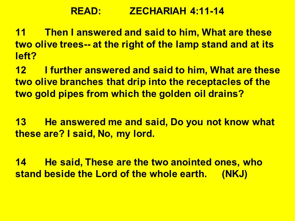 READ:ZECHARIAH 4:11-14 11Then I answered and said to him, What are these two olive trees-- at the right of the lamp stand and at its left.