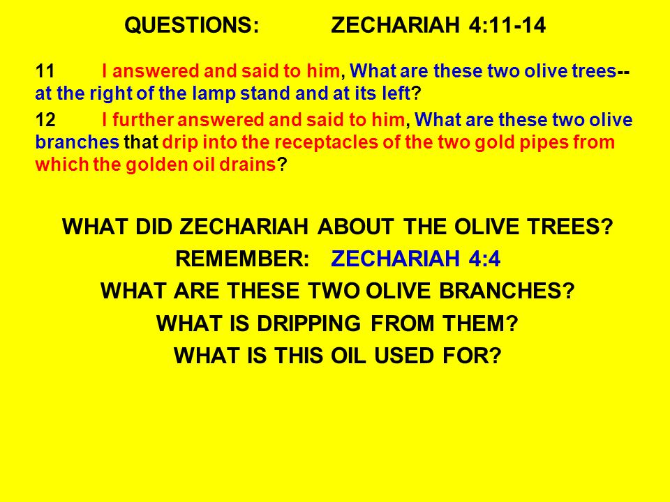 QUESTIONS: ZECHARIAH 4:11-14 11I answered and said to him, What are these two olive trees-- at the right of the lamp stand and at its left.