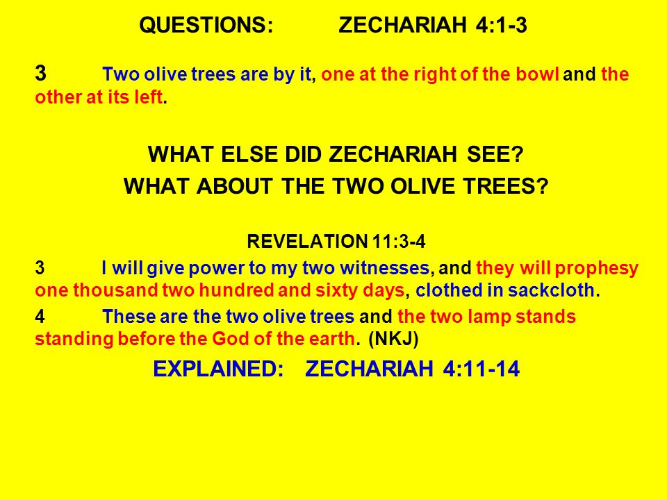 QUESTIONS:ZECHARIAH 4:1-3 3 Two olive trees are by it, one at the right of the bowl and the other at its left.