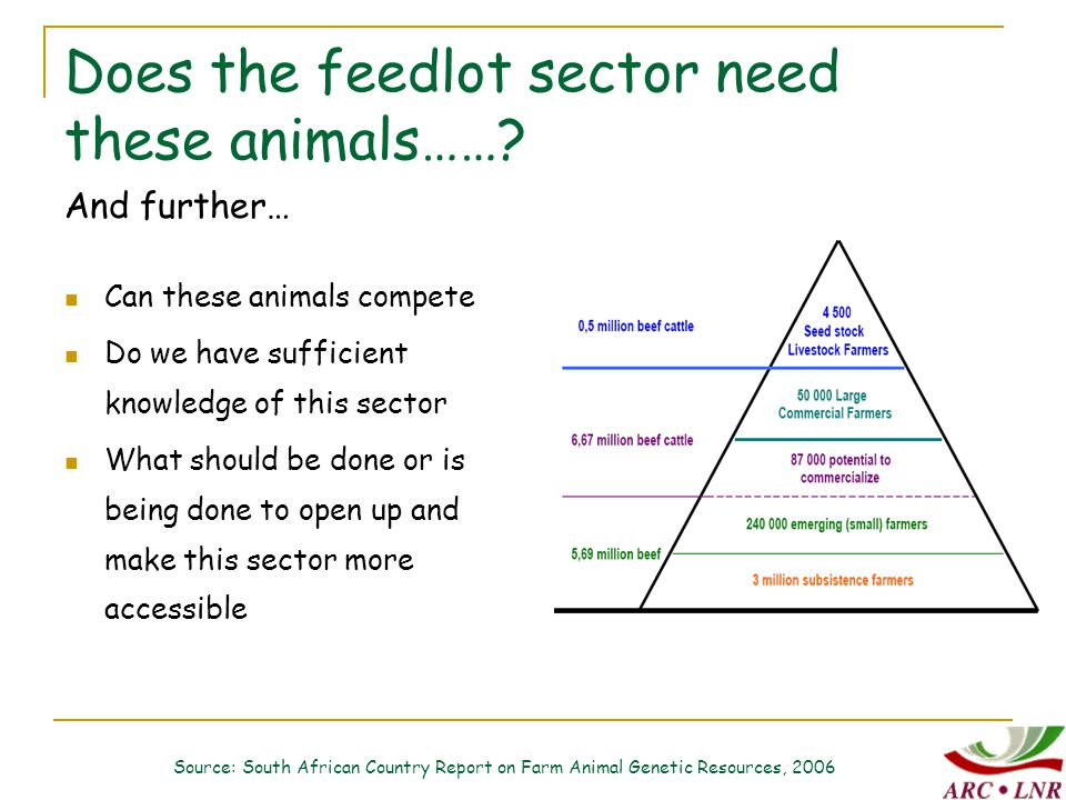 Does the feedlot sector need these animals…….