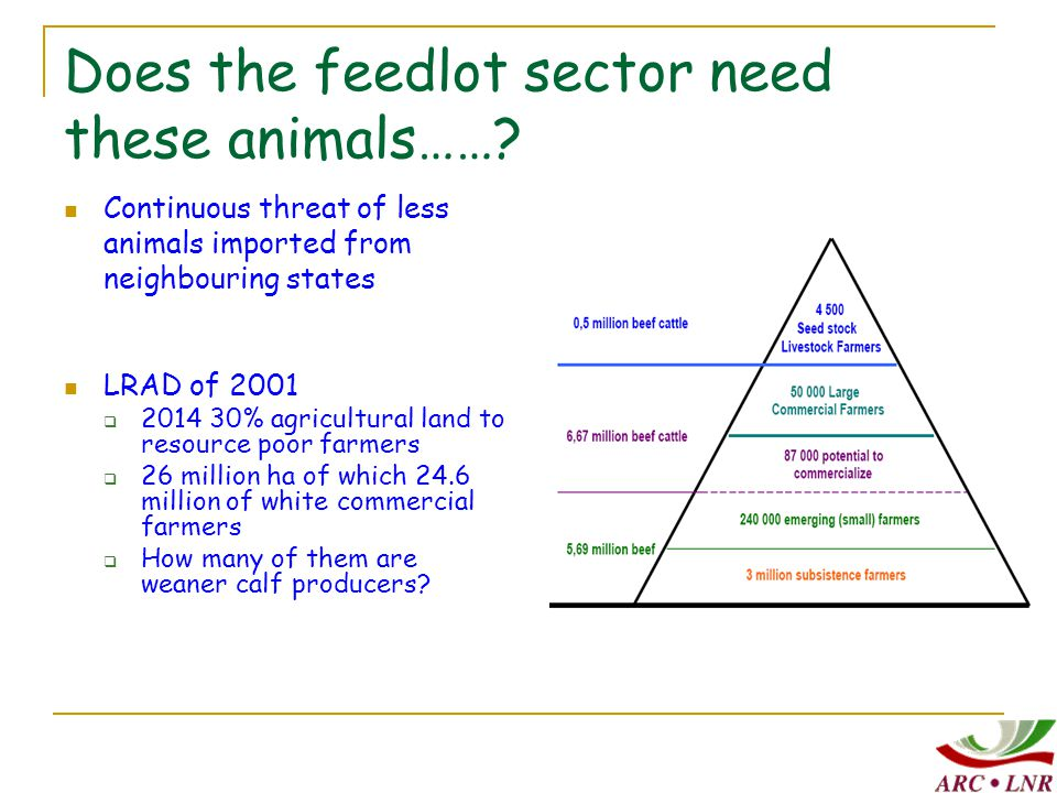 Correct pre-slaughter and slaughter practice Other qualities  No DFD  Normal drip loss