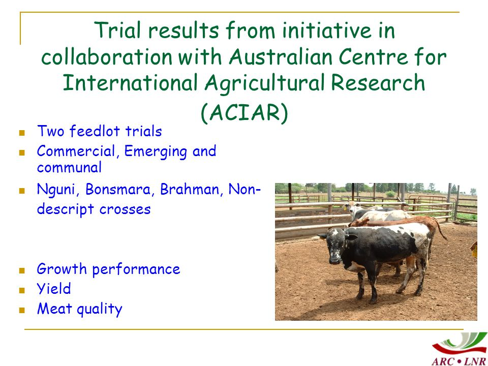 Trial results from initiative in collaboration with Australian Centre for International Agricultural Research (ACIAR) Two feedlot trials Commercial, Emerging and communal Nguni, Bonsmara, Brahman, Non- descript crosses Growth performance Yield Meat quality