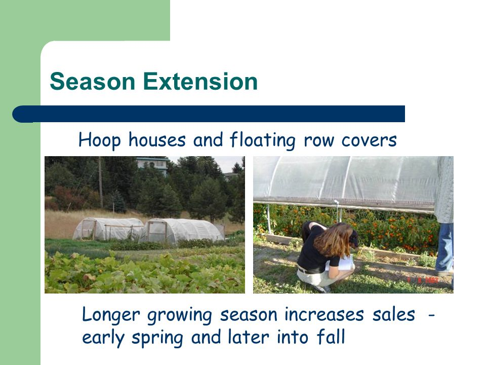 Season Extension Longer growing season increases sales - early spring and later into fall Hoop houses and floating row covers