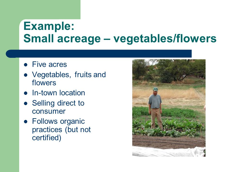 Example: Small acreage – vegetables/flowers Five acres Vegetables, fruits and flowers In-town location Selling direct to consumer Follows organic practices (but not certified)