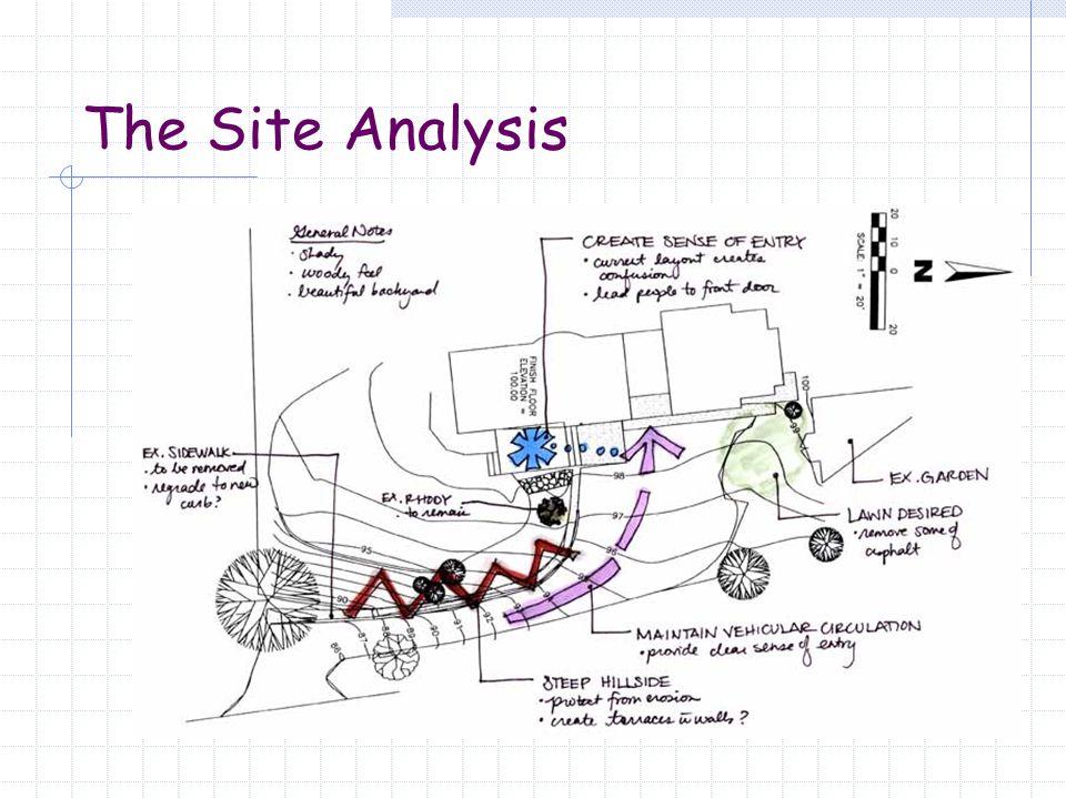 The Site Analysis