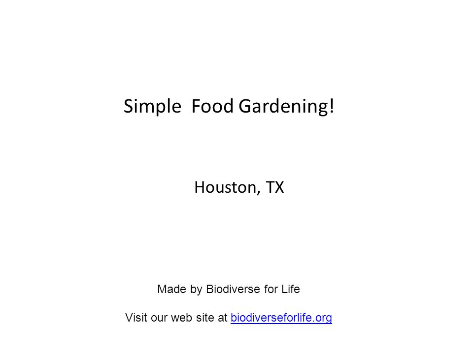 Simple Food Garden Installation : Raised Beds Clear and break ground.