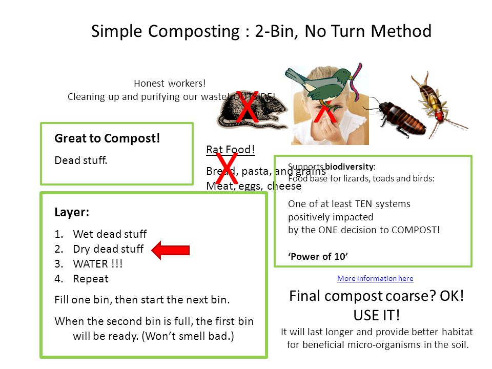 Will I Get: RATS . SMELLS . BUGS . Simple Composting : 2-Bin, No Turn Method Great to Compost.
