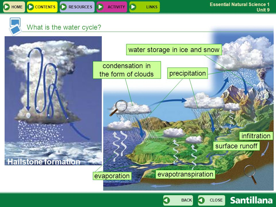 Essential Natural Science 1 Unit 9 What is the water cycle? HOMERESOURCESCONTENTS CLOSEBACK water storage in ice and snow precipitation evaporation co