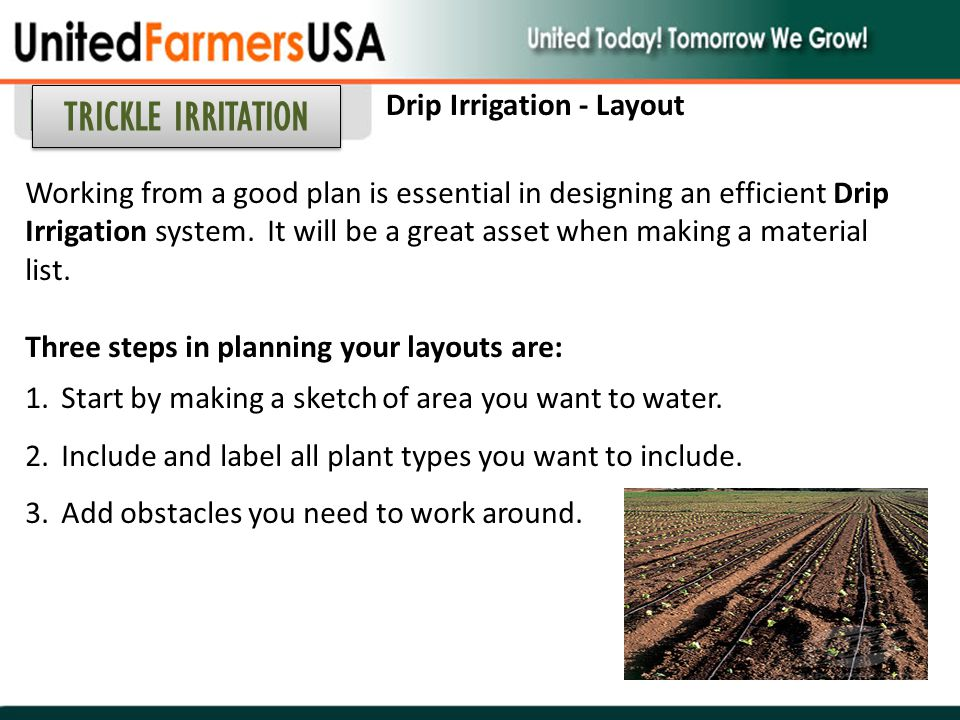 Working from a good plan is essential in designing an efficient Drip Irrigation system. It will be a great asset when making a material list. Three st