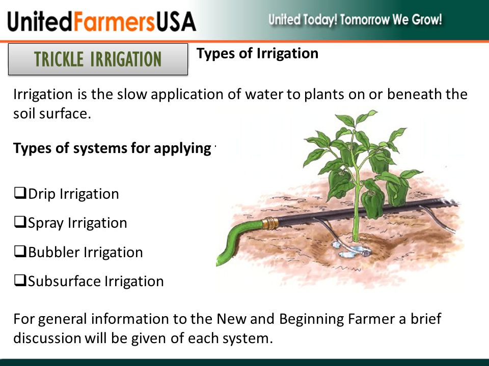 Irrigation is the slow application of water to plants on or beneath the soil surface. Types of systems for applying the water are:  Drip Irrigation 