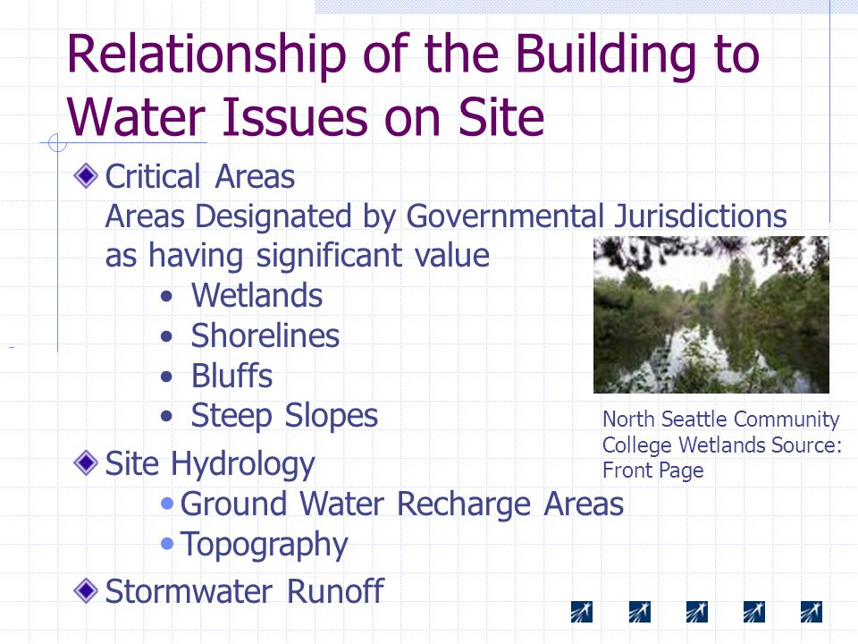 Relationship of the Building to Water Issues on Site Critical Areas Areas Designated by Governmental Jurisdictions as having significant value Wetlands Shorelines Bluffs Steep Slopes Site Hydrology Ground Water Recharge Areas Topography Stormwater Runoff North Seattle Community College Wetlands Source: Front Page
