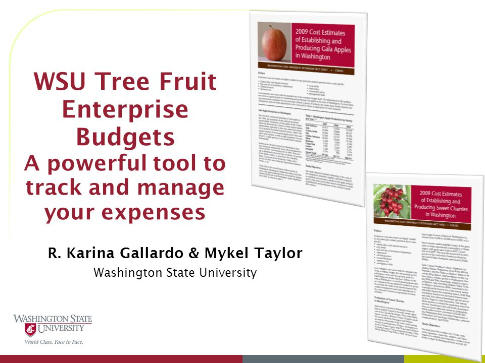 WSU Tree Fruit Enterprise Budgets A powerful tool to track and manage your expenses R.