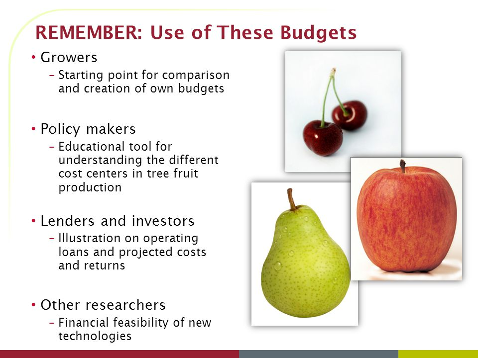 REMEMBER: Use of These Budgets Growers –Starting point for comparison and creation of own budgets Policy makers –Educational tool for understanding the different cost centers in tree fruit production Lenders and investors –Illustration on operating loans and projected costs and returns Other researchers –Financial feasibility of new technologies