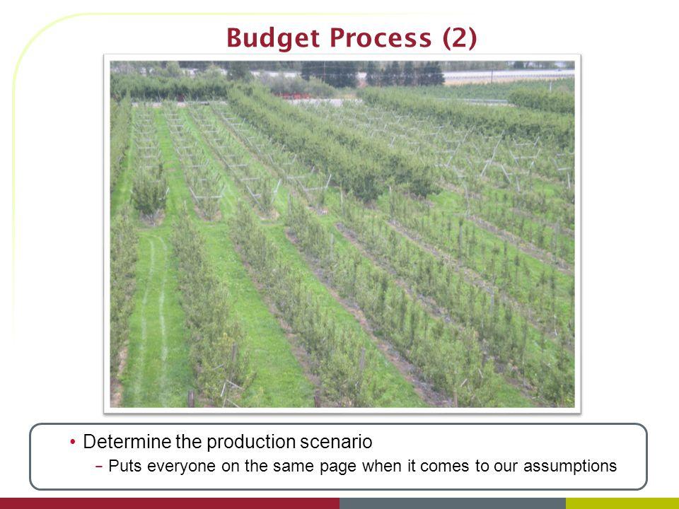 Budget Process (3)