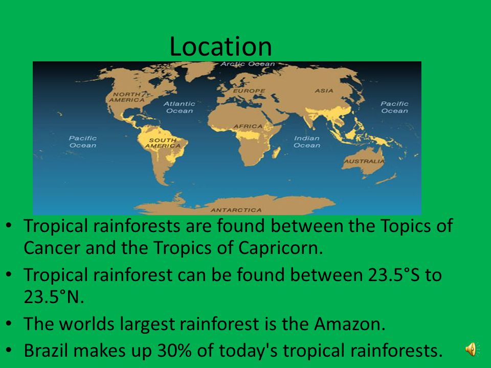 Location Tropical rainforests are located along equator.