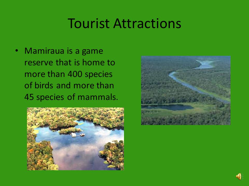Tourist Attractions Tourist can enjoy the lush vegetation and unique plants and animals that no other biome has.