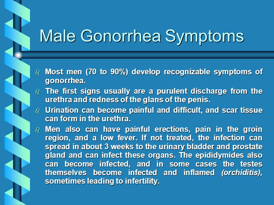 Male Gonorrhea Symptoms b Most men (70 to 90%) develop recognizable symptoms of gonorrhea. b The first signs usually are a purulent discharge from the