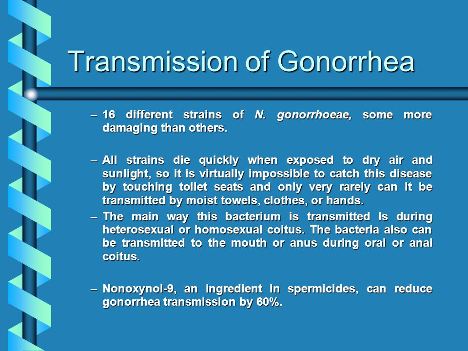 Transmission of Gonorrhea –16 different strains of N.