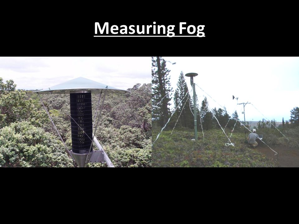 Measuring Fog