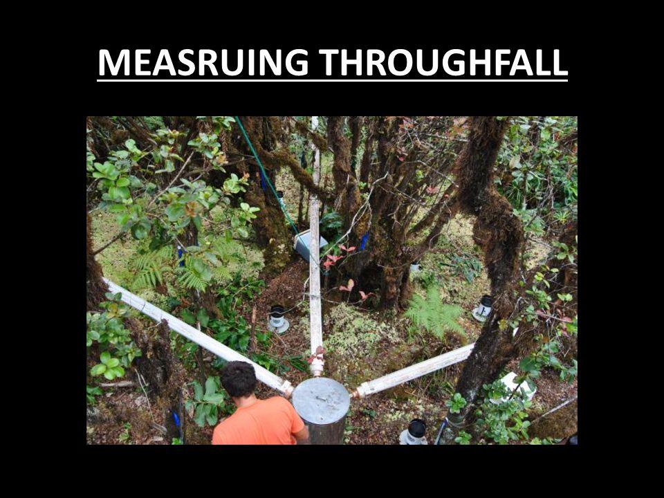 MEASRUING THROUGHFALL