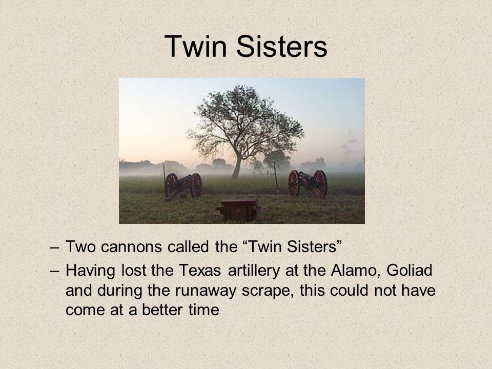 Twin Sisters –Two cannons called the Twin Sisters –Having lost the Texas artillery at the Alamo, Goliad and during the runaway scrape, this could not have come at a better time