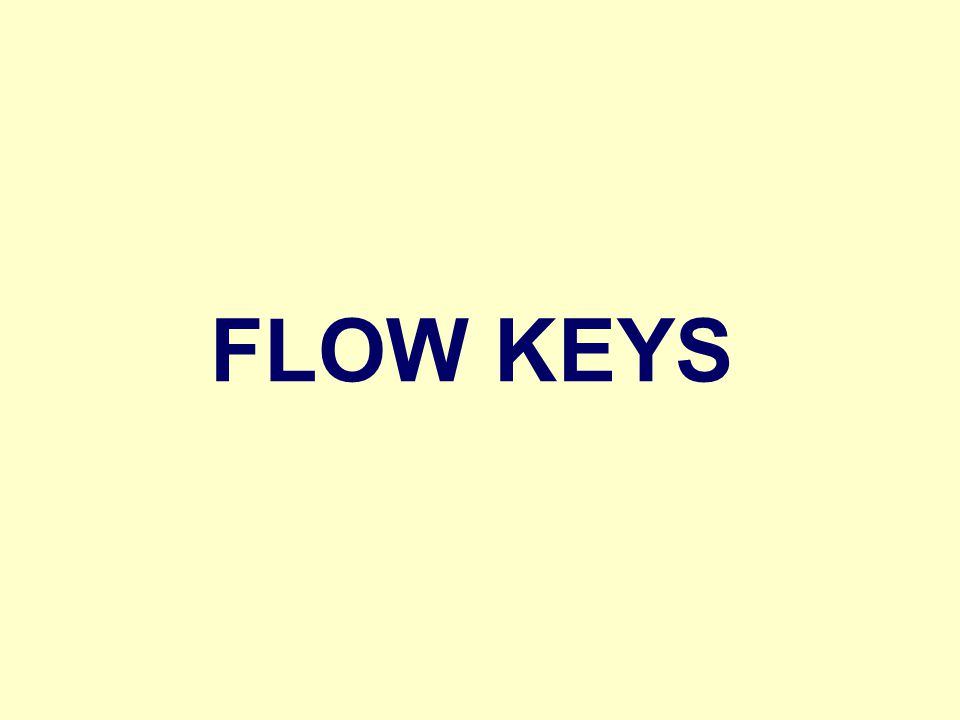 FLOW KEYS