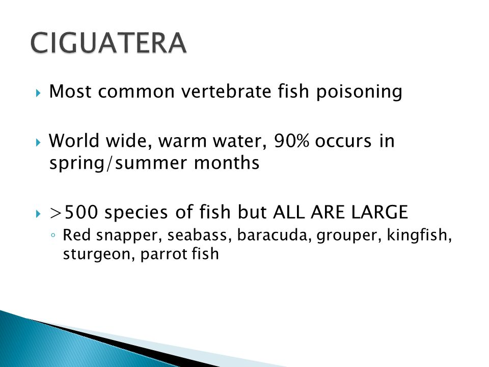  Most common vertebrate fish poisoning  World wide, warm water, 90% occurs in spring/summer months  >500 species of fish but ALL ARE LARGE ◦ Red snapper, seabass, baracuda, grouper, kingfish, sturgeon, parrot fish