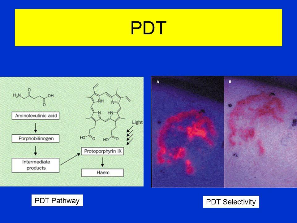 PDT PDT Pathway PDT Selectivity