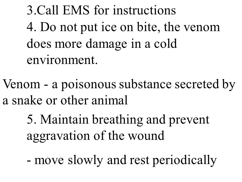 3.Call EMS for instructions 4. Do not put ice on bite, the venom does more damage in a cold environment. Venom - a poisonous substance secreted by a s