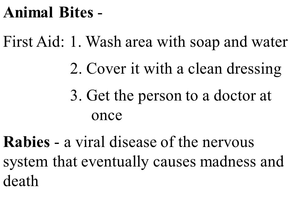 Animal Bites - First Aid: 1. Wash area with soap and water 2. Cover it with a clean dressing 3. Get the person to a doctor at once Rabies - a viral di