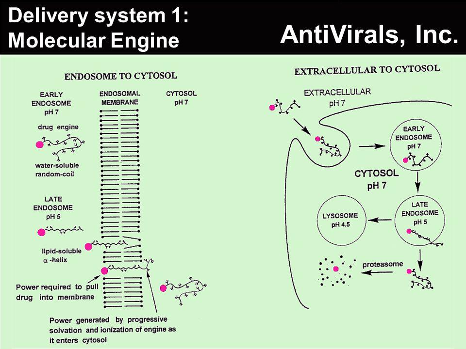 Delivery system 1: Molecular Engine AntiVirals, Inc.