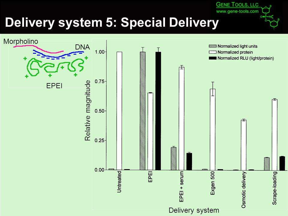 Morpholino EPEI Delivery system 5: Special Delivery DNA Delivery system Relative magnitude