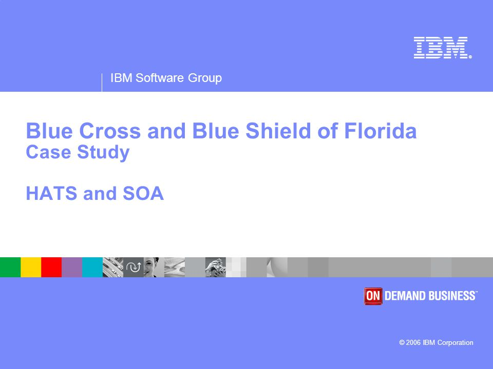 IBM Software Group 2 Business Challenge Company Vision The largest and oldest health plan provider in the state, Blue Cross and Blue Shield of Florida (BCBSF) is a company focused primarily on the health industry, delivering value through an array of meaningful choices.