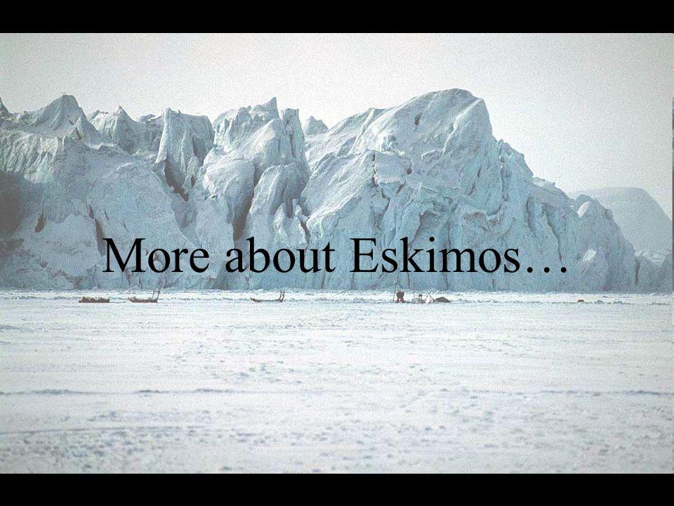 More about Eskimos…
