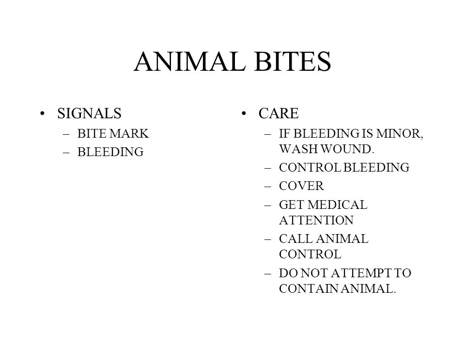 ANIMAL BITES SIGNALS –BITE MARK –BLEEDING CARE –IF BLEEDING IS MINOR, WASH WOUND. –CONTROL BLEEDING –COVER –GET MEDICAL ATTENTION –CALL ANIMAL CONTROL
