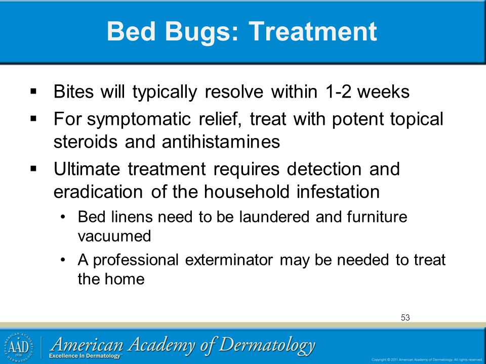 Bed Bugs: Treatment  Bites will typically resolve within 1-2 weeks  For symptomatic relief, treat with potent topical steroids and antihistamines 