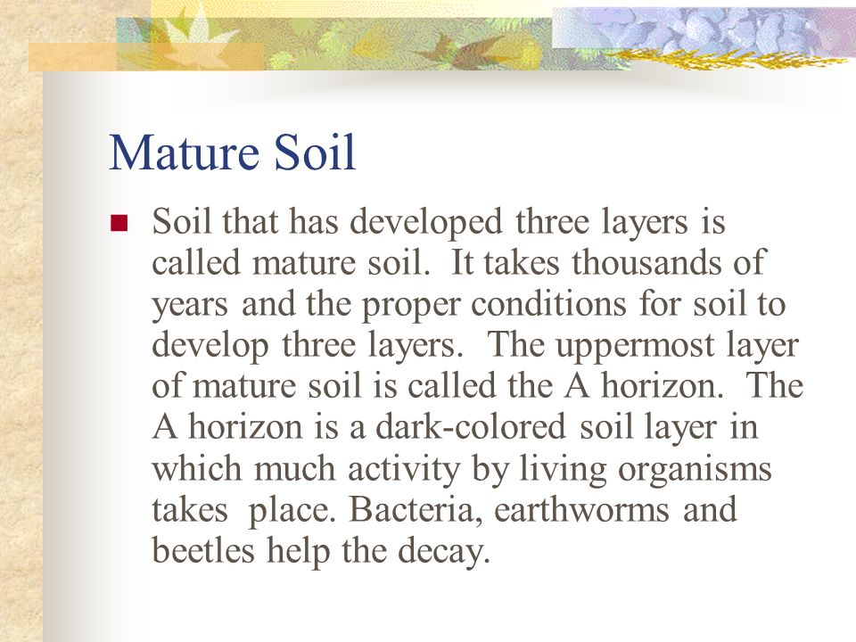 Mature Soil Soil that has developed three layers is called mature soil.