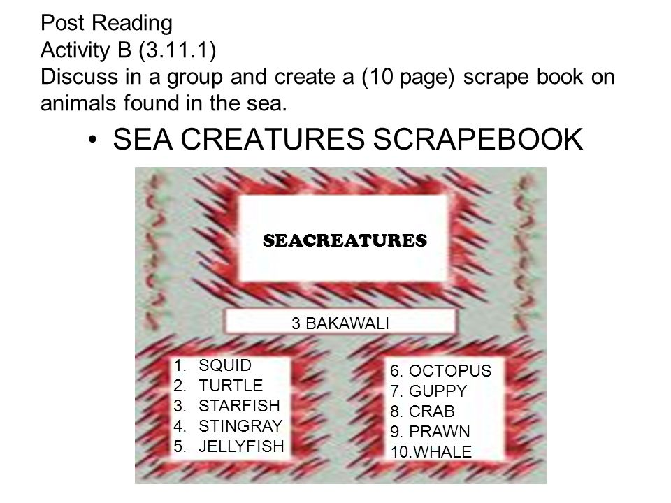 Post Reading Activity B (3.11.1) Discuss in a group and create a (10 page) scrape book on animals found in the sea. SEA CREATURES SCRAPEBOOK SEACREATU