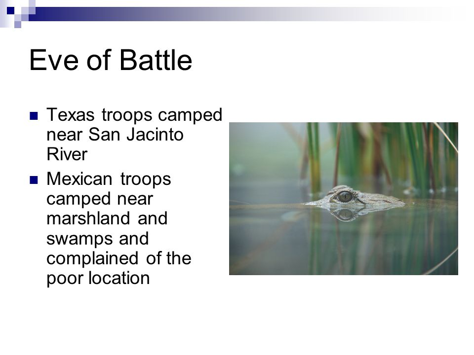 Eve of Battle Texas troops camped near San Jacinto River Mexican troops camped near marshland and swamps and complained of the poor location