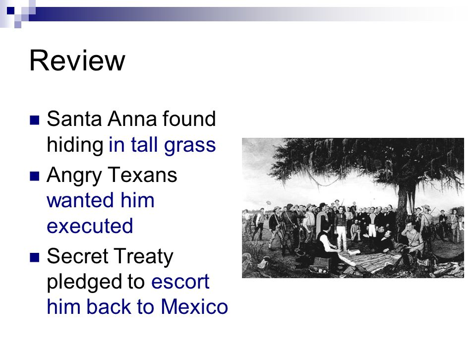 Review Santa Anna found hiding in tall grass Angry Texans wanted him executed Secret Treaty pledged to escort him back to Mexico