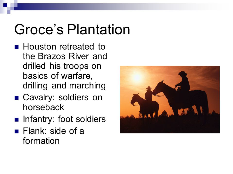 Groce's Plantation Houston retreated to the Brazos River and drilled his troops on basics of warfare, drilling and marching Cavalry: soldiers on horseback Infantry: foot soldiers Flank: side of a formation
