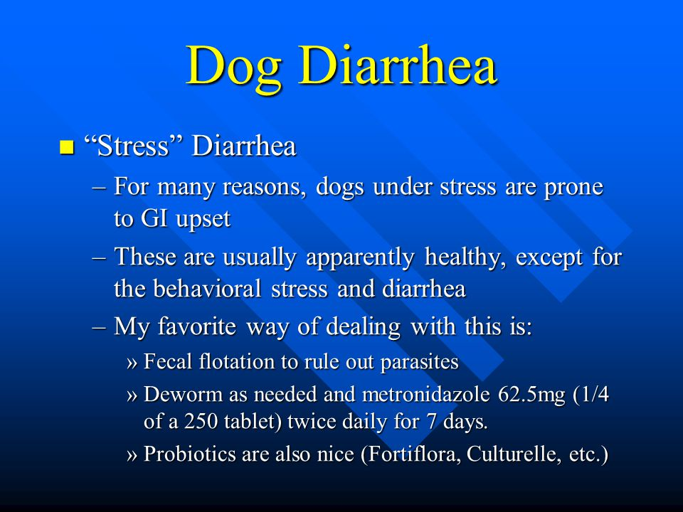 Dog Diarrhea Stress Diarrhea Stress Diarrhea –For many reasons, dogs under stress are prone to GI upset –These are usually apparently healthy, except for the behavioral stress and diarrhea –My favorite way of dealing with this is: »Fecal flotation to rule out parasites »Deworm as needed and metronidazole 62.5mg (1/4 of a 250 tablet) twice daily for 7 days.